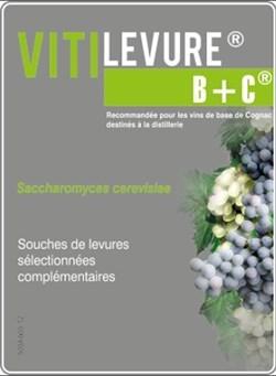 Дрожжи винные Витилевюр ВС 5 гр - фото 4805