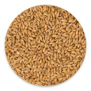 Солод «Wheat» Bestmalz, 1 кг