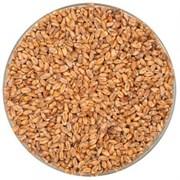 Солод «Wheat Dark» Weyermann, 1 кг